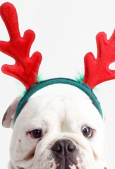 How to Avoid the Naughty List: The Dos and Don'ts of Holiday Parties