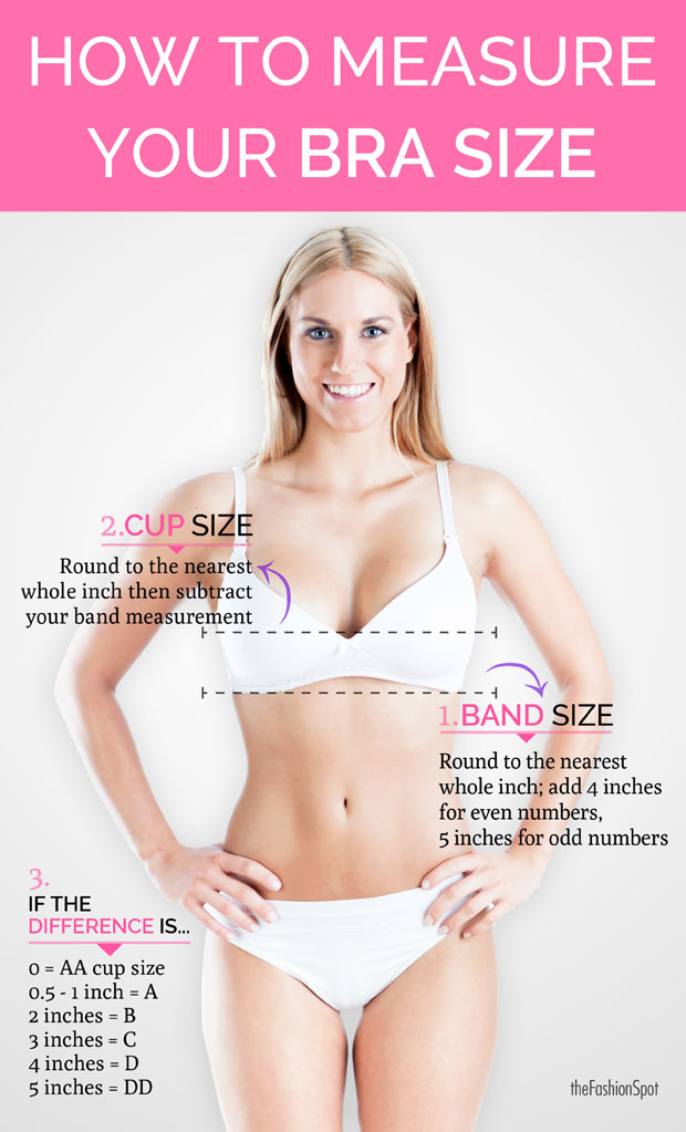 How To Measure Bra Size Bra Size Calculator Thefashionspot