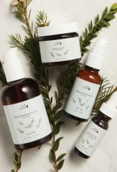 The Best Tea Tree Oil-Based Products to Invest in This Winter