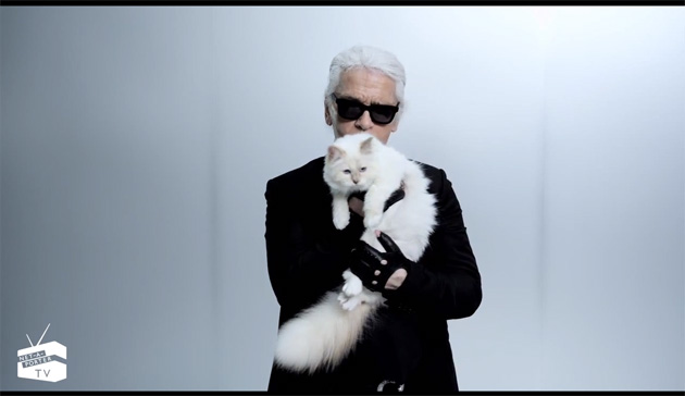 I Guess You Should Watch This Choupette Video