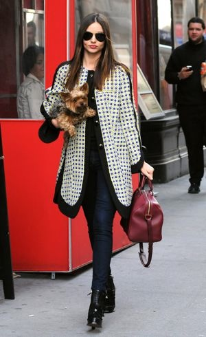 Miranda Kerr walks her dog New York City March 2012