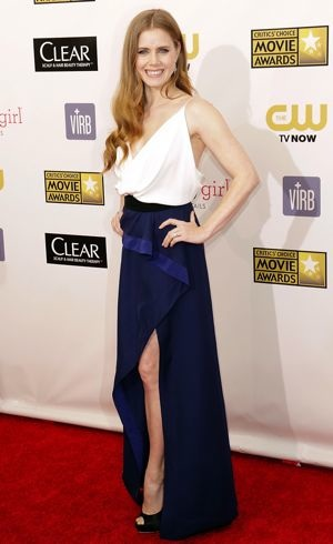 Amy Adams 18th Annual Critics Choice Movie Awards Santa Monica Jan 2013