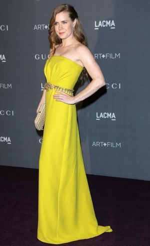 Amy Adams LACMA 2012 Art Film Gala Los Angeles Oct 2012